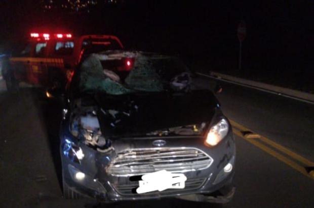 Homem morre atropelado ao pedir ajuda após um acidente na RS-122, em Flores da Cunha Divulgação/Grupo Rodoviário da Brigada Militar