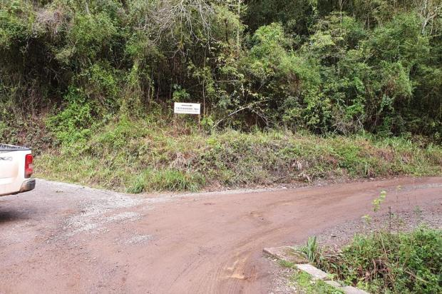 Alargamento de estrada alternativa de acesso a Nova Roma do Sul começa na próxima semana Hadair Ferrari/Divulgação