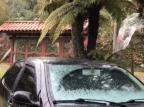 VÍDEO: São Francisco de Paula tem registros de neve nesta quinta-feira Ramiro Rombaldi / Divulgação/Divulgação