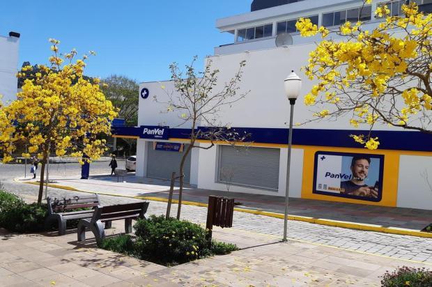Expansão de rede de farmácias abre 27 vagas na Serra. Saiba como participar Panvel/Divulgação