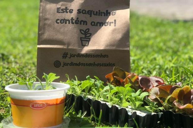 Projeto realizado por empresas de Caxias já distribuiu 850 kits com mudas de flores Leticia Doncatto Dal Corso/Divulgação