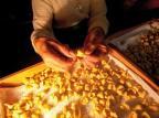 Festival de Cultura e Gastronomia de Gramado começa nesta quinta Leonid Streliaev/Divulgação