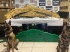 Operação conjunta encontra 200 quilos de maconha em chácara de Caxias do Sul Polícia Civil/Divulgação